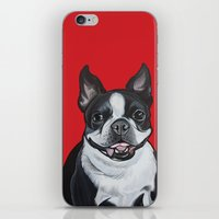 coco iPhone & iPod Skins featuring Coco by Pawblo Picasso