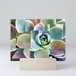 Succulents collage Mini Art Print