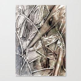 The Shrew Canvas Print