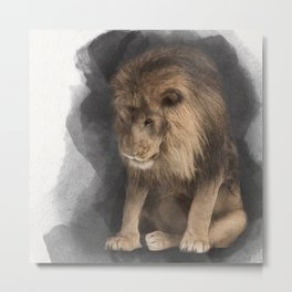 Lion No 4 Metal Print