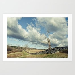 Dead Tree and Stone Wall - Split Toned Rural Landscape Photo Art Print