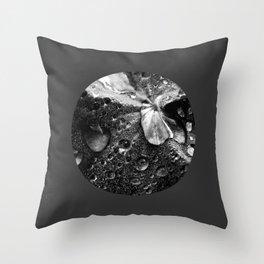 water drops XVII Throw Pillow