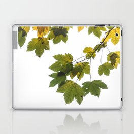 Green And Yellow Maple Leaf Laptop & iPad Skin