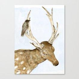 Deer and Bird Canvas Print