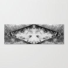 Mirror Mirror on My Long Face Canvas Print