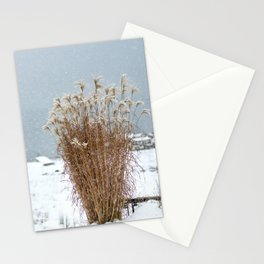Snowland Stationery Cards