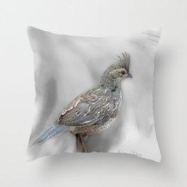 Baby Quail Art-Barbara Chichester Throw Pillow