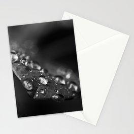 B&W Rain on Leaf Stationery Cards