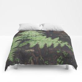 John Muir Fern, Yosemite Comforters