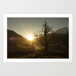 Himalayan tree Art Print