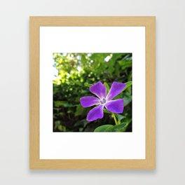 purple morning Framed Art Print