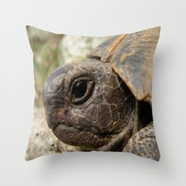 Close Up Side Portrait Of A Turkish Tortoise Throw Pillow