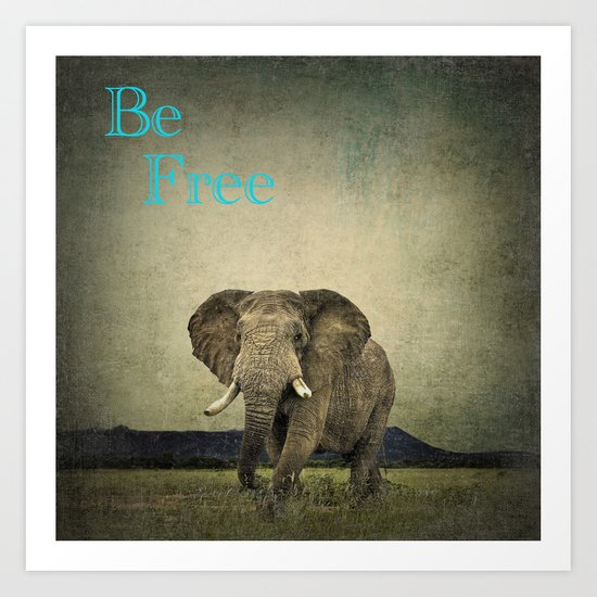 Elephant 1 Art Print