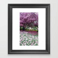 Ottawa Tulip Festival Framed Art Print