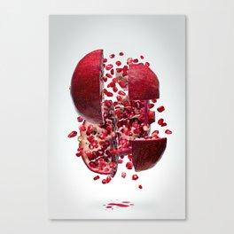 Flying Pomegranate Canvas Print
