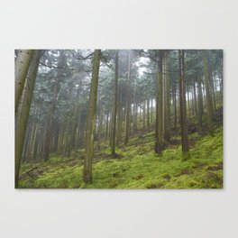 Up the Hill. Canvas Print