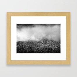 The Neverending Forest Framed Art Print