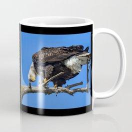 Alaskan Adult Bald_Eagle - Quizzical Coffee Mug