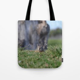 more ground than squirrel Tote Bag