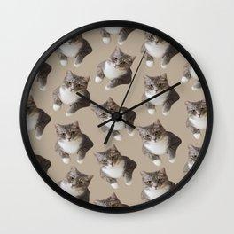 beige tan grey american wirehair cat pattern Wall Clock