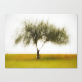 My Tree Canvas Print