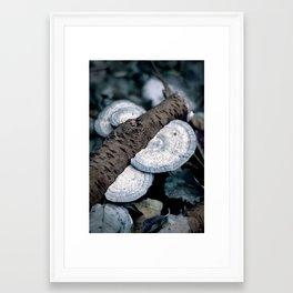 Dead & Living. Framed Art Print