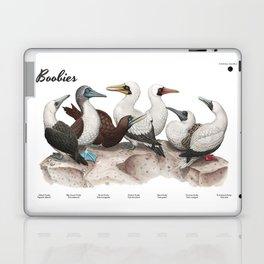 Boobies Laptop & iPad Skin