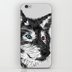 Gray wolf iPhone & iPod Skin