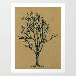 February Tree Art Print