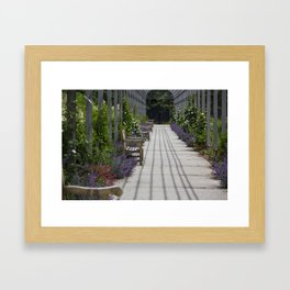 Garden Bench Framed Art Print