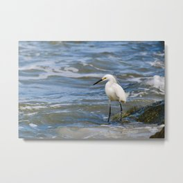 White Egret in the Surf Metal Print