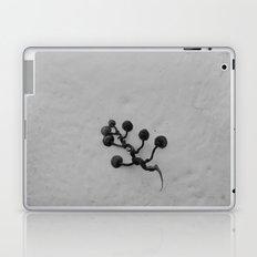 Cling Laptop & iPad Skin