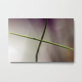 Grass--cross Metal Print