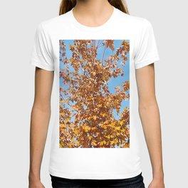 Blue Sky, Orange Leaves T-shirt