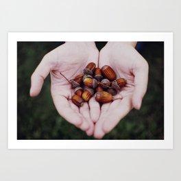 Handy acorns Art Print