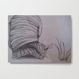 Musings of a Snail Metal Print