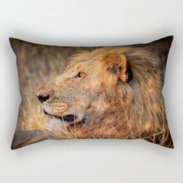 Lion in the evening light, South Africa Rectangular Pillow