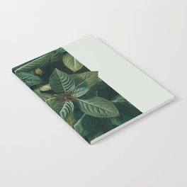 Growth III Notebook