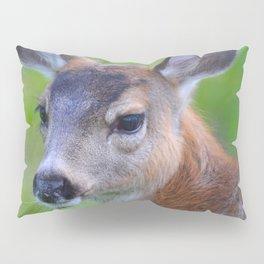 Sitka Black-Tail Fawn Pillow Sham