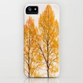 Aspen Trees #decor #society6 #buyart iPhone Case