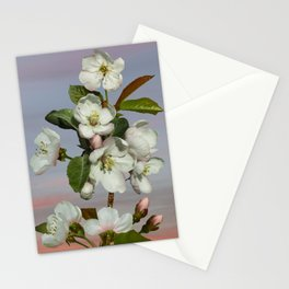 Spade's Apple Blossoms Stationery Cards