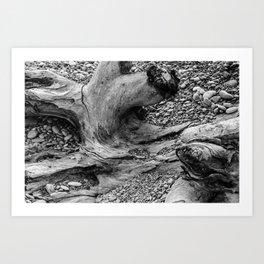 Coastal Texture Art Print