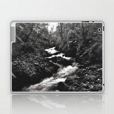 Vintgar Gorge, Bled, Slovenia. Laptop & iPad Skin