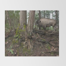 Rustic Buffalo in the Woods Throw Blanket