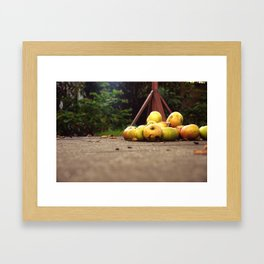 Cooking Apples Framed Art Print