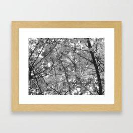 Look Up II Framed Art Print