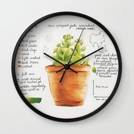 Mini Jade Succulent Wall Clock