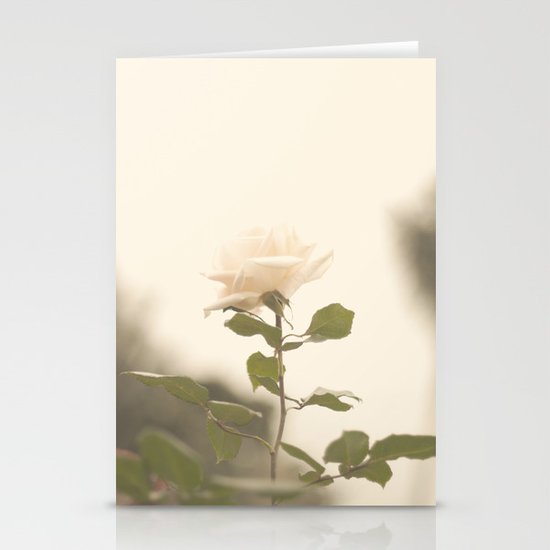 White Soft Rose (Vintage Flower Photography) Stationery Cards