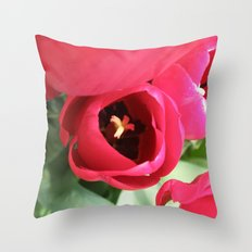A Little Shy #2 Throw Pillow