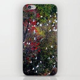 Ibises In Flight iPhone Skin